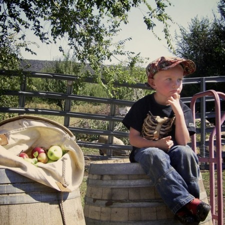 An apple picking party & picnic