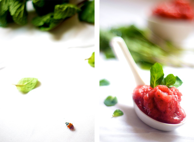 strawberry mint sorbet