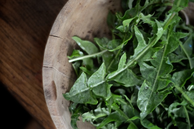 Weeds on the Kitchen Table: Wilted Dandelion Greens with Toasted Mustard Seed