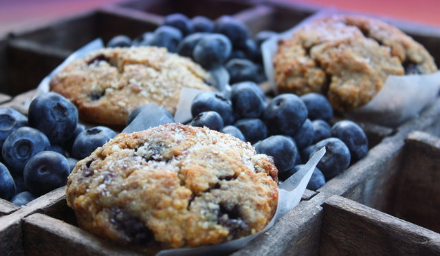 Grain-free Blueberry Almond Crumb Muffins from Mommypotamus ...