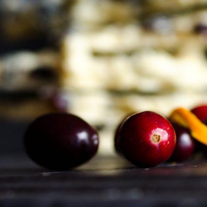 Honey-sweetened White Chocolate Cranberry Bark