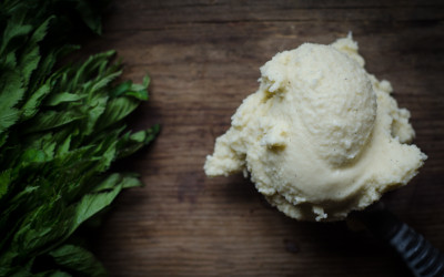 Vanilla Mint Ice Cream