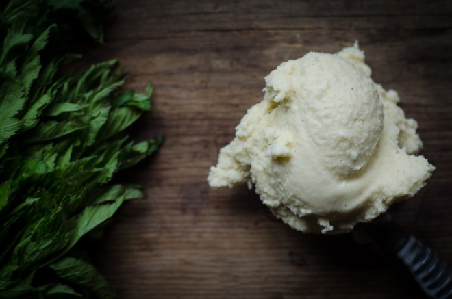 Vanilla Mint Ice Cream — Nourished Kitchen