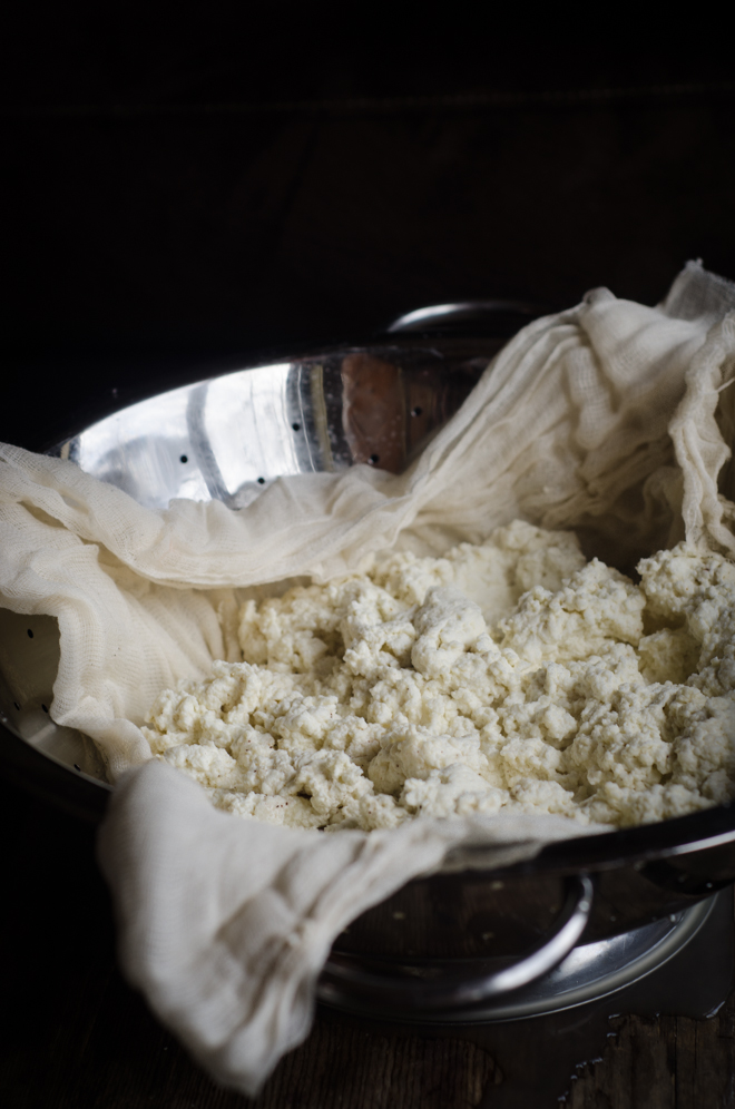 How to Make Farm Cheese