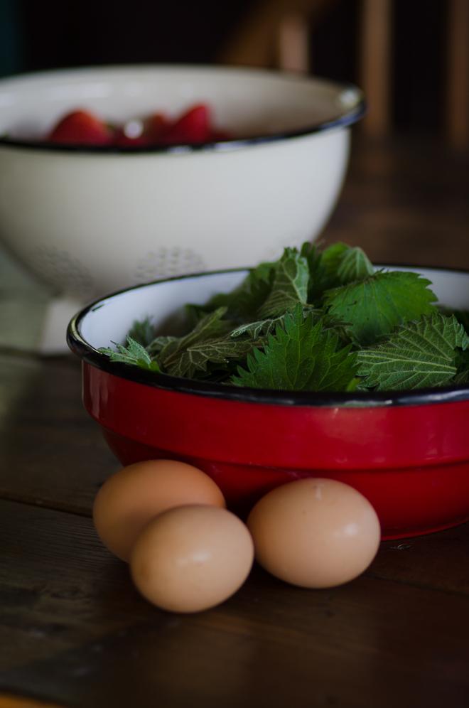 nettle bowl (1 of 1)