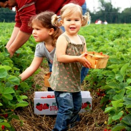 How to Get Kids Excited about Fresh Produce This Growing Season