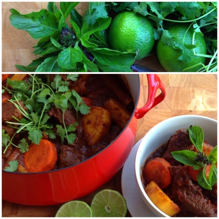 Vietnamese-Style Beef Stew (Bo Kho)