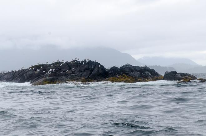 sitka island