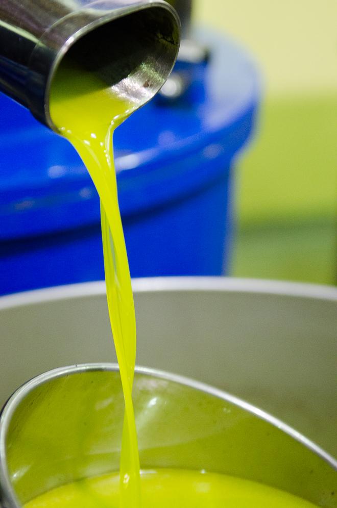 jovial olive oil-2