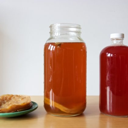 Should you worry about fluoride in your kombucha?