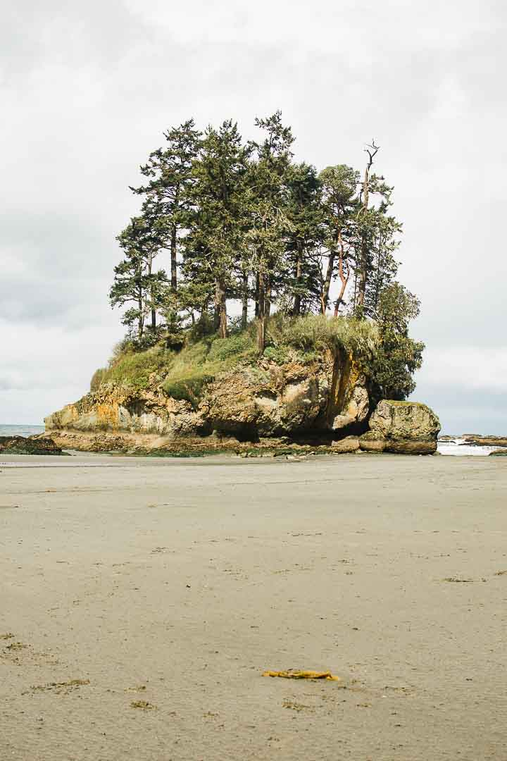 Salt Creek in Washington