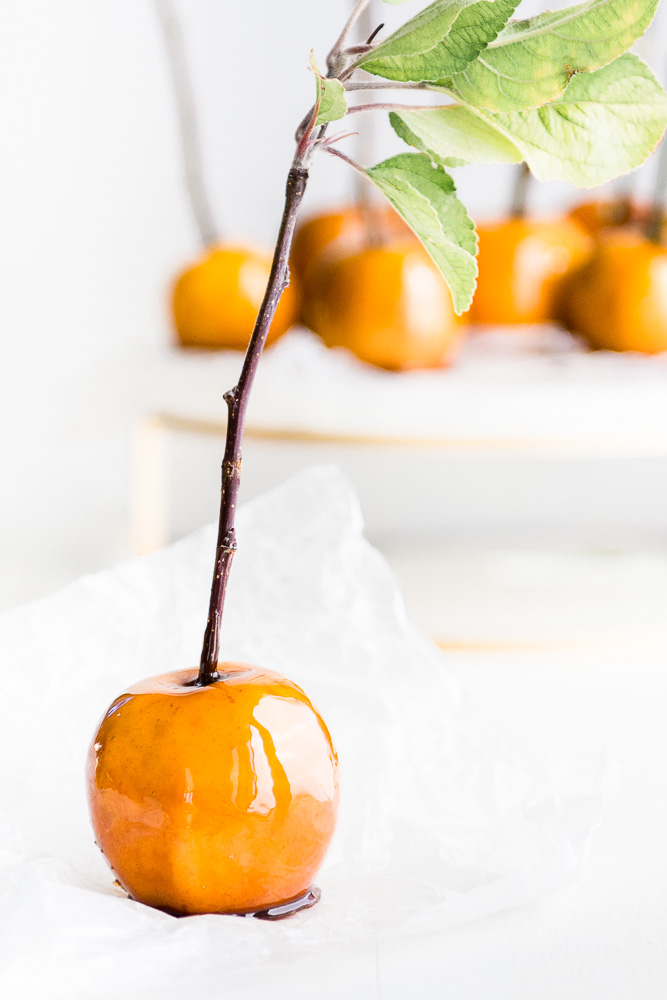 Maple Candied Apples made with fresh apples, maple sugar, maple syrup and soft apple cider